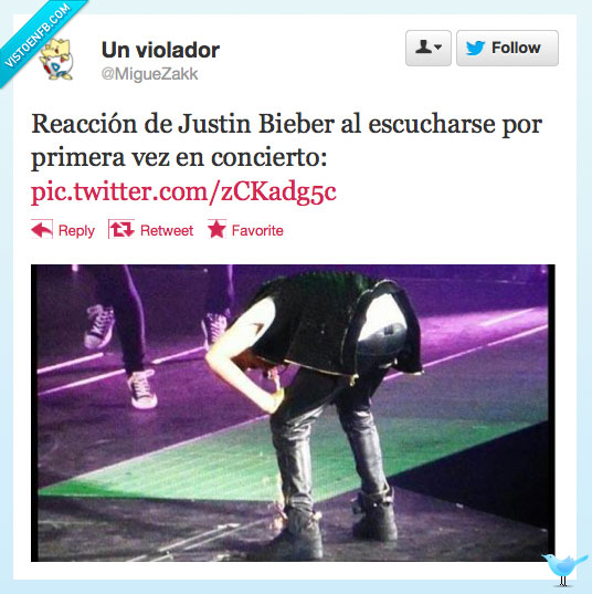 concierto,Fails,Justin Bieber,potar,vomita