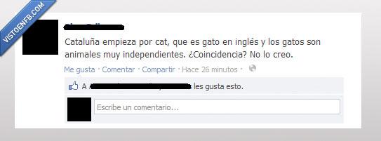 cat,cataluña,catalunya,facebook,gato,independencia