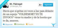 Enlace a ¡Voldemort, yo te invoco! por @Fabregat_Esp