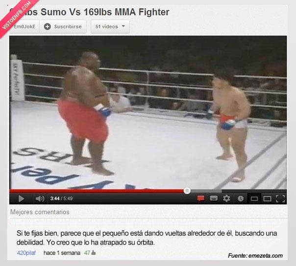 Boxeo,Gordo,Orbita,youtube