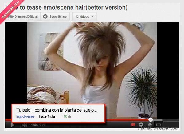 cardar,comentario,pelo,planta,video,youtube