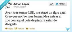 Enlace a No, no fue buena idea por @AdriLopezW