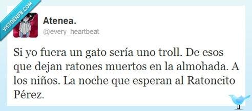 almohada,gato,mi gato se llama guantes,Ratoncito Pérez,troll