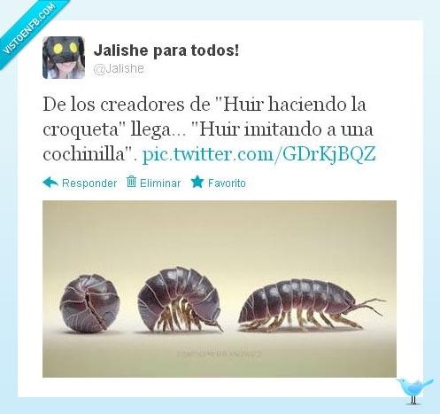 Cochinilla,Croqueta,Huir