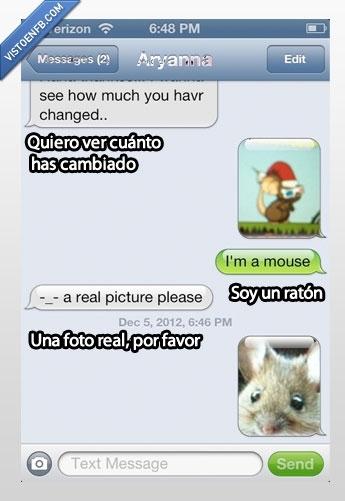 cambiado,foto,ratón,real,whatsapp