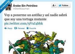 Enlace a Tortugas Ninja del disimulo por @GranMusulman