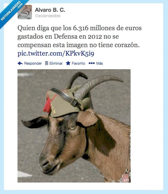 cabra,Defensa,España,gorro,legión,presupuesto,sombrero