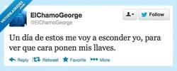 Enlace a Ya veréis qué risas por @elchamogeorge