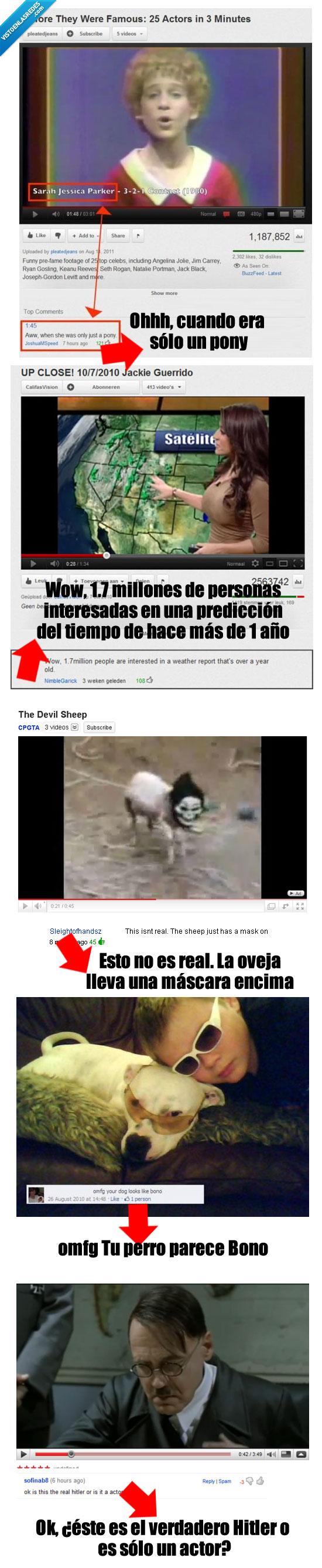 comentarios,fail,tontos,vídeos,wtf,youtube