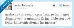 Enlace a No entiendo cómo pueden estar tan aburridas por @TaboadaLucia