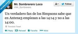 Enlace a Un verdadero fan de los Simpsons por @mr_sombrerero