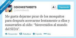 Enlace a Pobres mosquitos por @odiomistweets