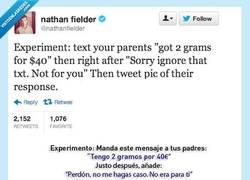 Enlace a ¿Nos unimos al experimento de @nathanfielder? #vistoenlasredes