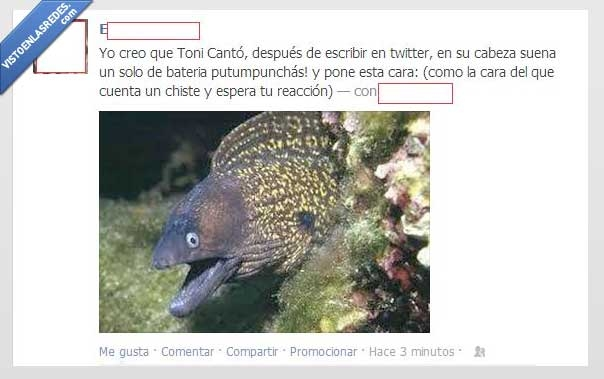 anguila,badatss,broma,cara,esperar,risa,toni cantó,twitter