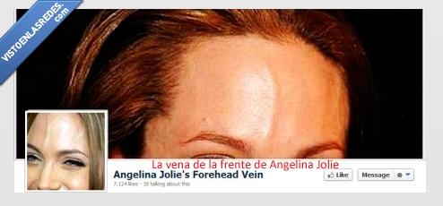 angelina jolie,facebook,frente,vena