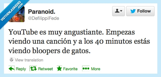 angustiante,bloopers,everywhere,gatos,youtube