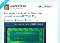 Enlace a Los privilegios de Chuck Norris por @ChuckNorrisDijo
