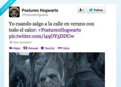 Enlace a Lo que pasa cuando hace mucho calor por @PostureoHgwarts
