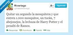 Enlace a Los peligros de quitar la mosquitera por @pabloriveriego