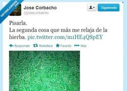 Enlace a @JoseCorbacho , ¿Cúal es la primera?