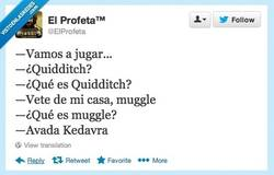 Enlace a Cuánta ignorancia muggle por @EiProfeta