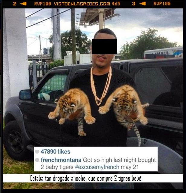 Borracho,dinero,dos,tigre