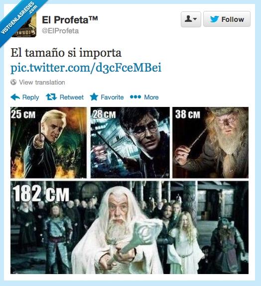 Albus Dumbledore,Draco Malfoy,El Señor de los Anillos,Gandalf,Harry Potter