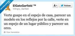 Enlace a Desgraciados espejos.... por @Angry_Garfield