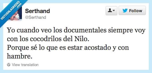 acostado,Cocodrilos,documental,hambre,Nilo,Twitter
