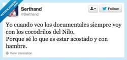 Enlace a Pobres cocodrilos... por @serthand