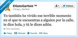 Enlace a Hol...diós por @Angry_Garfield