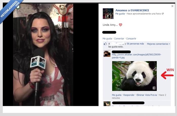 Amy,Evanesence,Panda,Parecidos,troll