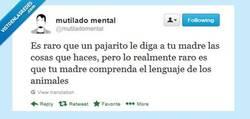 Enlace a Madres políglotas por @mutiladomental