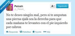 Enlace a PD: Te odio por @_Pelosh_