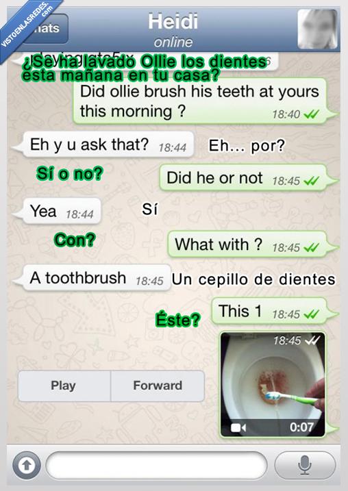 cepillo de dientes,ex,lavabo,mear,novia,orina,pis,whatsapp