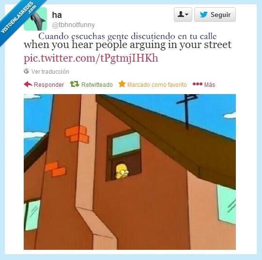 asomar,discusión,homer,mirar,twitter,ventana