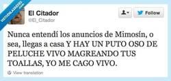 Enlace a En realidad será un asesino en serie por @El_Citador