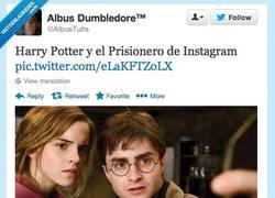 Enlace a Harry Potter y... por @AlbusTuits