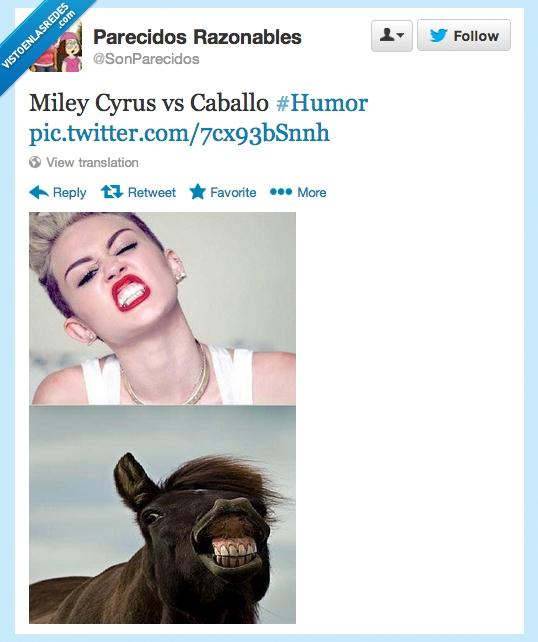 boca,caballo,dientes,miley cyrus,parecidos,posicion,razonable