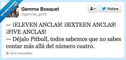 Enlace a Pitbull, no nos intentes sorprender por @gemma_gd13