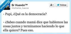 Enlace a Democracia real por @toCarlos_huevos