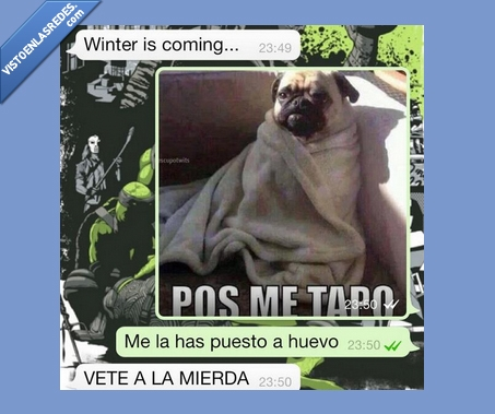 Frío,Manta,perro,pos me tapo,pug,WhatsApp,Winter is coming