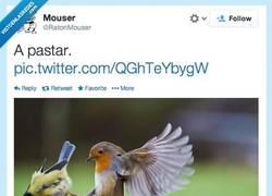 Enlace a No me vengas con monsergas por @RatonMouser