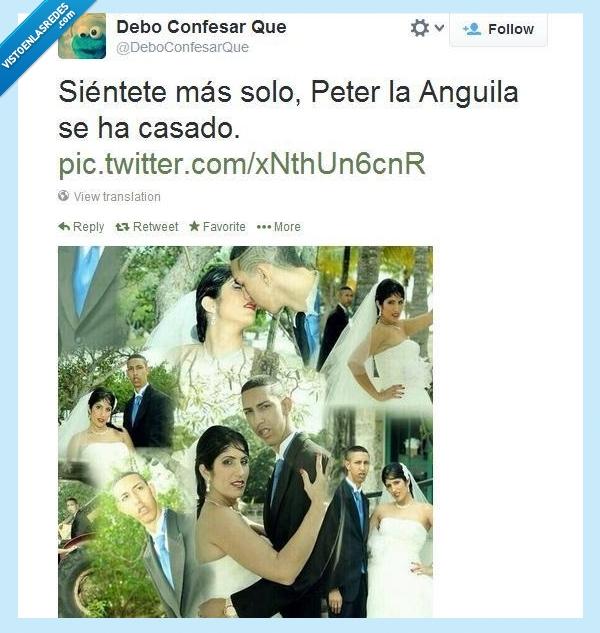 anguila,boda,casarse,feo,mujer,Peter,seco