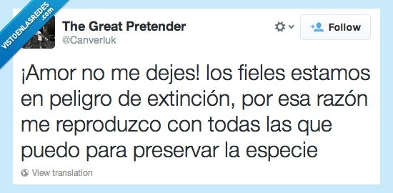 cuernos,especie,extinción,fiel,preservar,reproducción