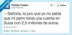 Enlace a Le digo la verdad, señoría por @PartidoTuiter