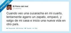 Enlace a La cucaracha, la cucaraaachaaa por @tuitsarmy