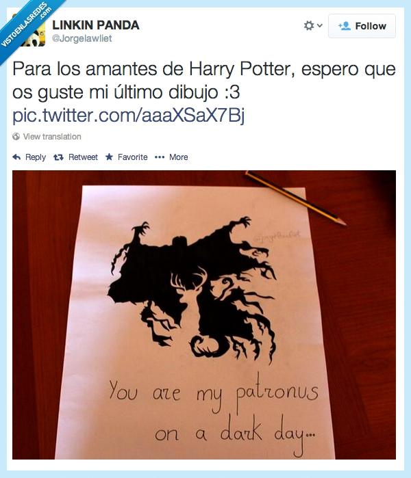 Vef Visto En Las Redes Os Gusta Harry Potter Mirad Este