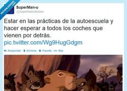 Enlace a ¡Corre, tortuga! por @supermanumolina