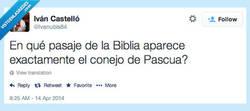 Enlace a San Conejito Apóstol, capítulo 9 por @Ivanubis84